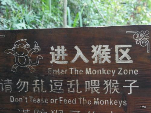 Das Jahr des Affen beginnt! Schild im Dschungel bei Xishuangbanna, Yunan. Foto: fmk